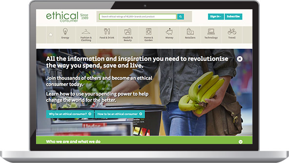 Screenshot: ECRA website on laptop.