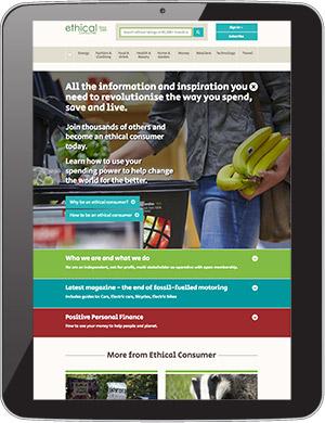 Screenshot: ECRA website on tablet device.